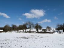 Landwirtschaftliche Schnee-Szene Stockbild