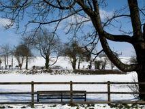 Landwirtschaftliche Schnee-Szene Lizenzfreies Stockfoto