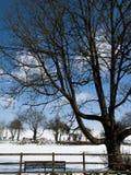 Landwirtschaftliche Schnee-Szene Lizenzfreie Stockbilder