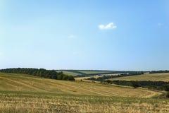 Landwirtschaftliche Sommerlandschaft Stockfoto