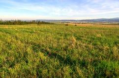Landwirtschaftliche Sommerlandschaft Lizenzfreie Stockfotos
