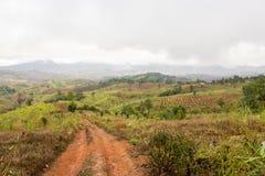 Landwirtschaftliche Straße im Berg Stockbilder