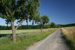 Landwirtschaftliche Straße im Norden von Hesse stockfotos