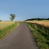 Landwirtschaftliche Straße im Norden von Hesse lizenzfreie stockfotografie