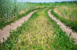 Landwirtschaftliche Straße am sonnigen Tag Lizenzfreie Stockfotos