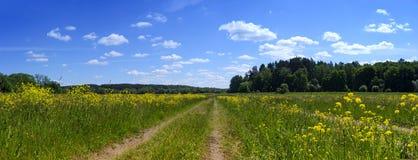 Landwirtschaftliche Straße und Feld Stockfoto