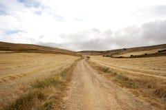 Landwirtschaftliche Szene Lizenzfreie Stockbilder