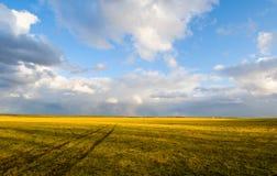 Landwirtschaftliche Szene stockfotos