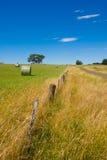 Landwirtschaftliche Szene Stockbild