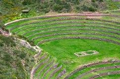 Landwirtschaftliche Terrassen im Moray, Peru Stockfoto