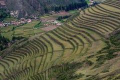 Landwirtschaftliche Terrassen von Inkaruinen von Pisac, Peru lizenzfreie stockfotos