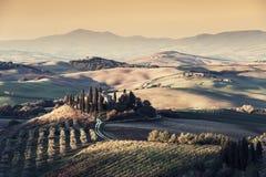 Landwirtschaftliche Weinleselandschaft mit Weinbergen und Gärten Lizenzfreie Stockfotografie