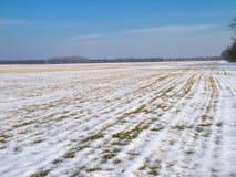 Landwirtschaftliche Winterlandschaft Stockbild
