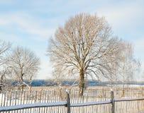 Landwirtschaftliche Winterlandschaft lizenzfreies stockbild