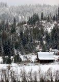 Landwirtschaftliche Winterszene. Stockfoto