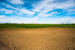 Landwirtschaftliche Zeit des Feldes im Frühjahr und blauer Himmel Lizenzfreies Stockfoto