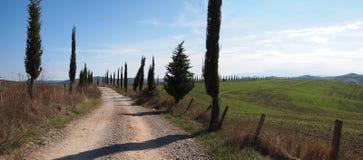 Landwirtschaftliche Zypressestraße in Toskana Stockfotografie
