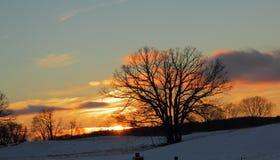 Landwirtschaftlicher Sonnenuntergang stockfotos