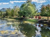 Landwirtschaftlicher Teich mit den Bäumen reflektiert Lizenzfreies Stockfoto