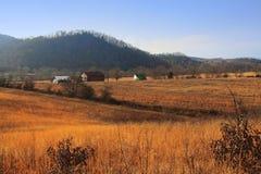 Landwirtschaftlicher Tennessee-Bauernhof Lizenzfreie Stockbilder
