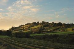 Landwirtschaftlicher Tyrone Stockfotografie
