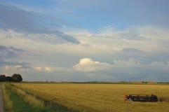 Landwirtschaftlicher voilet Sonnenaufgang Stockbild