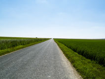 Landwirtschaftlicher Weg und blauer Himmel. Stockbild