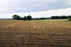 Landwirtschaftliches Ackerland Stockbilder