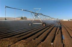 Landwirtschaftliches bewirtschaftenqueensland lizenzfreie stockfotos