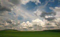 Landwirtschaftliches bl?hen gr?ne und gelbe Feldfr?chte auf blauem Himmel und Wolken lizenzfreie stockfotografie