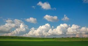 Landwirtschaftliches bl?hen gr?ne und gelbe Feldfr?chte auf blauem Himmel und Wolken stockfotos