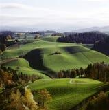 Landwirtschaftliches die Landschaft-Schweiz-Emmentaler-Alpengrün lizenzfreie stockfotografie