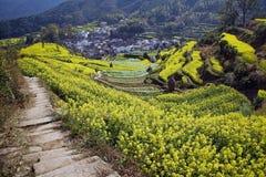 Landwirtschaftliches Dorf Lizenzfreies Stockbild