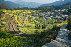Landwirtschaftliches Dorf Lizenzfreie Stockfotografie