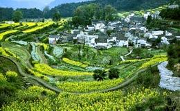Landwirtschaftliches Dorf Stockbilder