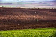 Landwirtschaftliches Feld Ackerland im Frühjahr, bereit Stockbild