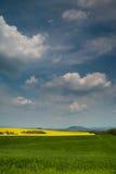 Landwirtschaftliches Feld - Boden Lizenzfreie Stockfotografie