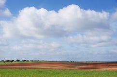 Landwirtschaftliches Feld, cloudsky Stockbilder