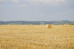 Landwirtschaftliches Feld des Herbstes Stockfotografie