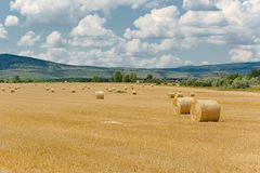 Landwirtschaftliches Feld mit Ballen Lizenzfreie Stockfotos