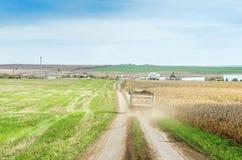 Landwirtschaftliches Feld mit dem Sattelzug, der auf die Straße zum Bauernhof reist Lizenzfreies Stockbild