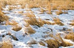 Landwirtschaftliches Feld mit Schnee Lizenzfreie Stockbilder