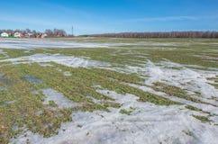 Landwirtschaftliches Feld unter dem Schnee Stockbilder