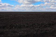 Landwirtschaftliches Frühlingsfeld stockbild