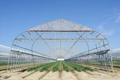 Landwirtschaftliches Gebäude für die Landwirtschaft Lizenzfreies Stockfoto