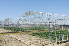 Landwirtschaftliches Gebäude für die Landwirtschaft Lizenzfreies Stockbild