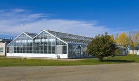 Landwirtschaftliches grünes Haus Stockfoto