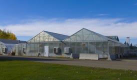 Landwirtschaftliches grünes Haus Stockbilder