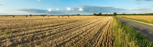 Landwirtschaftliches Heufeld mit Ballen und Straße Sonnenunterganglicht und blauer Himmel Panoramische Ansicht Stockbild