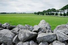Landwirtschaftliches Irland Lizenzfreie Stockfotografie